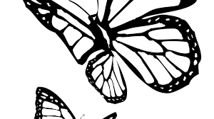 Butterfly Coloring Pages Pdf Inspirationa Free Simple Kindergarten Monarch Print