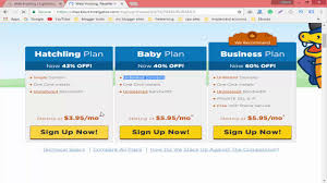 What Is Hosting How To Purchase A Cheap Hosting From Namecheap ... Different Types Of Web Hosting Explained Shared Vps Dicated What Is How To Buy Hosting In Cheap Pricers500 Best Services 2018 Reviews Performance Tests Infographic Getting Know Vsaas Is Video Surveillance As A Service Made Easy Free Vs Why Do You Need Design And Windows Singapore Virtual Private Sver Usonyx Addiction Offers Information Support New Bedford Imanila Host Website Design Faest Designing Somalia Domain And Namesver Youtube