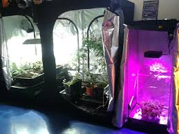 kit chambre de culture cannabis armoire de culture interieur kit complet pack chambre de culture