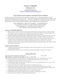 Professional Profile Resume Examples