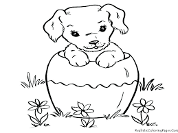 Dog Coloring Pages For Preschoolers Cute Cat And To Download Print Free In Cats Dogs Breathtaking Color Colouring