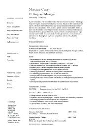 Director Resume Examples Samples It Program Manager Sample Job Description Technology With