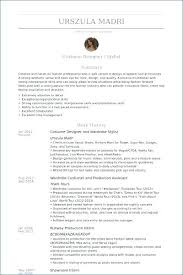 Perfect Resume Examples Fashion Stylist Of Resumes 2016