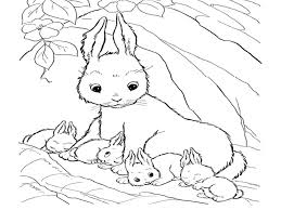 Bunny Coloring Pages Easter Color