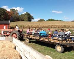 Pumpkin Patches Maryland by Sharp U0027s Farm Fun For 2 Hayride Pick Your Own Pumpkins And