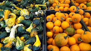Free farm fruit fall celebration decoration orange