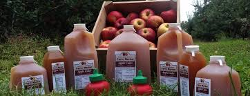 Best Pumpkin Patch Lancaster Pa by Farm Market Fresh Produce Fruits U0026 Vegetables Lancaster Pa