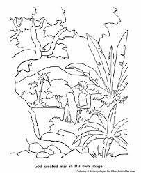The Biblical Creation Story Coloring Pages 6a