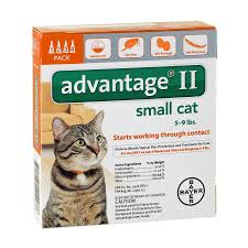 flea treatment for cats cat flea tick walmart