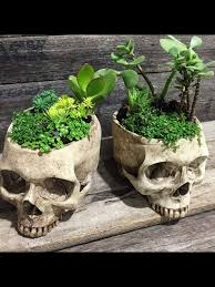 Skull Planters | Decorate My Home::inspiration | Pinterest ... 735 Best Skull Love Images On Pinterest Drawing And Art Bobby Fierro Dave Violette Blog Skulldiggery Many Fun Funky Ideas In The Garden Of Tiffany Homedecoration Skulls Skeleton Backyard My Pinterest Posts The Horned Beast Sculpture Palace Sykes 74 Skulls Antlers Artwork Theres A Hidden Theme In This Years Big Brother House Take Tching Post Idea I Showed It With Cacti Which Is Em Corsa Backyard Wild March 2014 42 Airbrushing Sheds Pop S Formation Creation Inc Sets