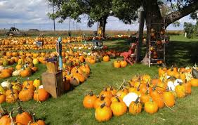 Columbus Ohio Pumpkin Patches by 8 Best Pumpkin Patches In South Dakota 2016