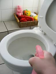 Unclogging A Bathroom Sink Naturally by How To Clean Your Whole House Without Nasty Chemicals Red And Honey