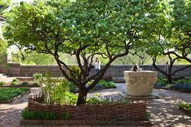 Triyae.com = Good Fruit Trees For Backyard ~ Various Design ... New York Roommate Room For Rent In Brooklyn 3 Bedroom Apartment Backyard Wedding Nikki Chip Photography The New York Botanical Garden Ny 5 Best Garden Design Patio Portfoliobackyard Iascontractobuilders Space4architecture Upper East Side Townhouse Wooden Backyard Sun Falling Into Of A Building City Dead Awesome Tree Houses World Can Change Gorgeous Small Shady Traditional Landscape Timeshare Back Second Year Animal City Capeyourdesk Suburban Long Island Stock Photo Royalty Free How To Furnish Your Terrace Or The Times