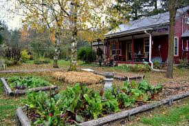 Amazing Country Garden Design Ideas Australia