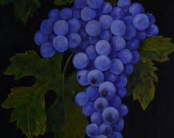 Wine And Grapes Kitchen Decor by Grapes Painting Etsy