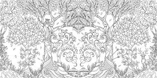 Enchanted Forest An Inky Quest Colouring Book Image
