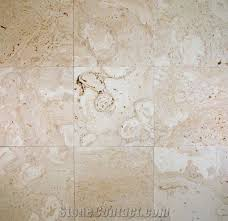 coralina shellstone limestone slabs tiles mexico beige limestone