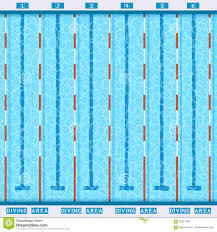Olympic Swimming Pool Top View Aerial Of Swimmers In