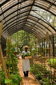 Sturdi Built Sheds Rochester Ny 11 best greenhouses images on pinterest greenhouse gardening