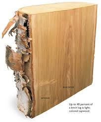 The Way Wood Works Birch Popular Woodworking Magazine