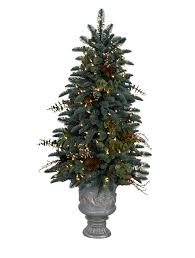 Balsam Christmas Trees Real by Decorating Appealing Living Room Design With Beautiful Balsam