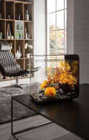Spongebob Aquarium Decorations Canada by Best 25 Acrylic Aquarium Ideas On Pinterest Aquarium Ideas