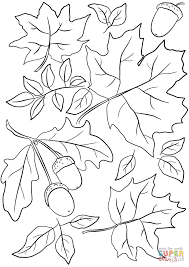 Click The Autumn Leaves And Acorns Coloring Pages