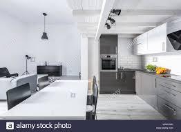 modern eingerichtetes apartment mit offener küche und