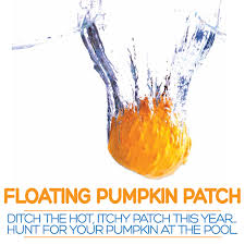 Pumpkin Patches Santa Cruz Area by Floating Pumpkin Patch Ridgway Swim Center For Kids Holidays