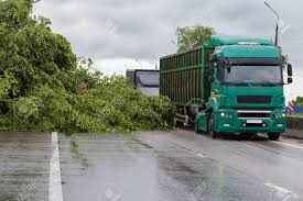 Trucks Circling The Fallen Tree From The Strong Wind On The Road ... Orange Tree Wooden First Trucks Pack Of 3 At John Lewis Partners Stock Photos Images Alamy Convoy Utility And Removal On The Way North I95 Davey Removal October 13th 2013 Toronto On Youtube Pine Tree Logs Being Moved By Logging Trucks Photo 123598464 Wright Service Reaps Rewards From Long Forestry Bucket Affordable How To Ensure Efficient Vocational Truck Specifications Equipment For Sale A Better Arborist American Historical Society
