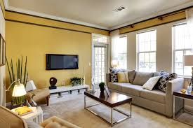 Yellow Living Room Color Schemes by Modern Living Room Paint Interior Design