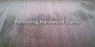 Dog Urine Odor Hardwood Floors by How To Remove Smells And Stains From Hardwood Floors