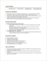 Real Estate Resume Sample Doc Examples Agent