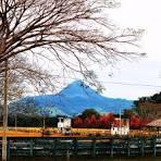 imagem de Agudo Rio Grande do Sul n-23