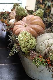 Corona Del Mar Pumpkin Patch by 183 Best Fall Decor Images On Pinterest Fall Decorating Fall