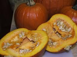 Libbys Pumpkin Puree Uk by Canning Granny Canning Pumpkin