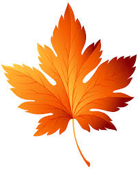Leaves clipart transparent background 8