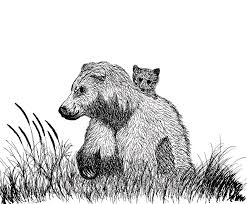 Grizzly Mama Bear With Cub Drawing By Abstract Angel Artist Stephen K