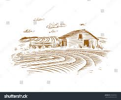 Crop Field Barn Drawing Stock Vector 578602057 - Shutterstock Pencil Drawings Of Old Barns How To Draw An Barn Farm Owl On Branch Drawing Tattoo Sketch Original Great Finished My Barn Owl Drawing Album On Imgur By Notreallyarstic Deviantart Art Black And White Panda Free Tree Line Download Linear Vector Hand Stock 263668133 Top Theme House Clipart Photos Country Projects For Kids Sketching Tutorial With Quick And Easy Techniques Of A Silo Ideals Illinois Experimental Dairy South