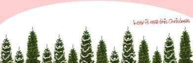 Christmas Tree Saplings Ireland by Mileburn Christmas Tree Farm County Antrim Northern Ireland Ni