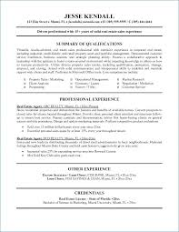 Realtor Resume Examples From Real Estate Resumes