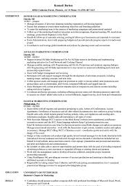 Marketing Coordinator Resume Examples - Yupar.magdalene ... 10 Clinical Research Codinator Resume Proposal Sample Leer En Lnea Program Rumes Yedberglauf Recreation Samples Velvet Jobs Project Codinator Resume Top 8 Youth Program Samples Administrative New Patient Care 67 Cool Image Tourism Examples By Real People Marketing Projects Entrylevel Data Specialist Monstercom