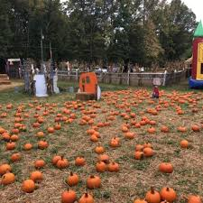 Free Pumpkin Patch In Fredericksburg Va by Clarks Farm Party U0026 Event Planning 721 Courthouse Rd Stafford