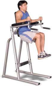 Roman Chair Leg Raises Jessie by Inflight Vertical Knee Raise Dip Vkr Fitness Direct