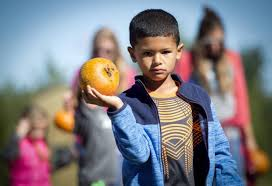 Sunny Side Pumpkin Patch Hours by The Kc Pumpkin Patch In Rural Olathe Is One Of A Couple Of Family