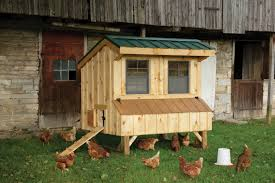 Chicken Coops: The Barn Yard & Great Country Garages Chicken Coop Plans Free For 12 Chickens 14 Design Ideas Photos The Barn Yard Great Country Garages Designs 11 Coops 22 Diy You Need In Your Backyard Barns Remodelaholic Cute With Attached Storage Shed That Work 5 Brilliant Ways Abundant Permaculture Building A Poultry Howling Duck Ranch Easy To Clean Suburban Plans Youtube Run Pdf With House Nz Simple Useful Chicken Coop Pdf Tanto Nyam