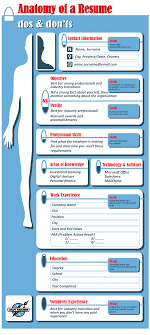 Anatomy Of A Resume, How To Decode And Understand | Visual.ly How To Write A Resume 2019 Beginners Guide Novorsum Ebook Descgar Job Forums Valerejobscom 1 Basic Resume Dos And Donts Pdf Formats And Free Templates Tutorialbrain Build A Life Not Albatrsdemos The Dos Donts Writing Rockin Infographic Top Writing Tips Get An Interview Call Anatomy Of How Code Uerstand Visually Why You Should Go To Realty Executives Mi Invoice Format Donts Services For Senior Cv Guides Student Affairs