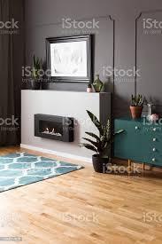 anlage auf grünen schrank im wohnzimmer graue innenausstattung mit plakat über dem kamin echtes foto stockfoto und mehr bilder biologie