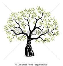 Vector Olive Tree