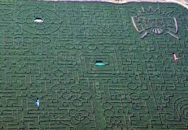 Pumpkin Patch Near Dixon Ca by 6 Biggest Corn Mazes And Pumpkin Patches Expedia Viewfinder